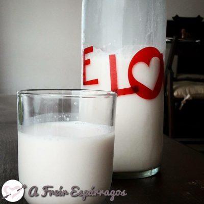 Cómo hacer leches vegetales
